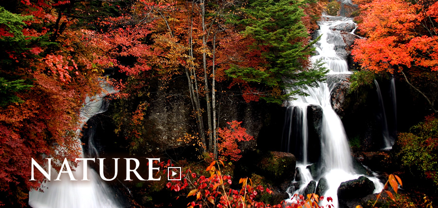 Nature. View the World-Famous Rich Nature in Okunikko and Beauty of Valleys in Kinugawa